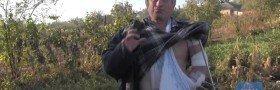 Human Rights Watch: Video om klasebomber i Øst-Ukraina