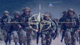 nato nei til krig