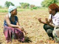 Det er for en stor del kvinner som er bøndene i Afrika, men de ser ikke mye til gavene fra Gates.