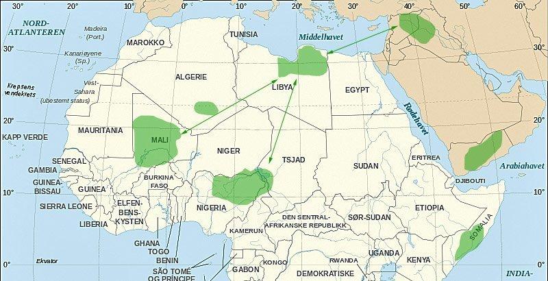 Den islamske staten og allierte jihadistgrupper i Midtøsten og Nord-Afrika.
