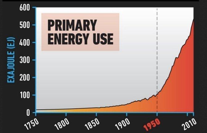 primærenergi forbruk
