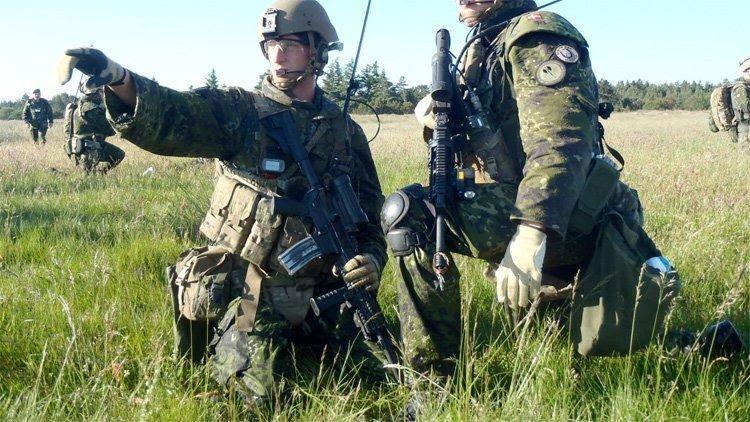 danske militære