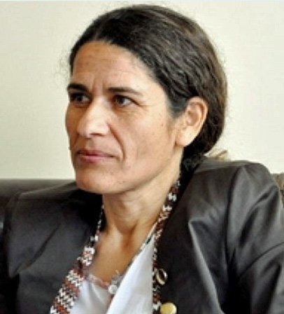 Syrian Democratic Council (MSD) Co-President İlham Ehmed
