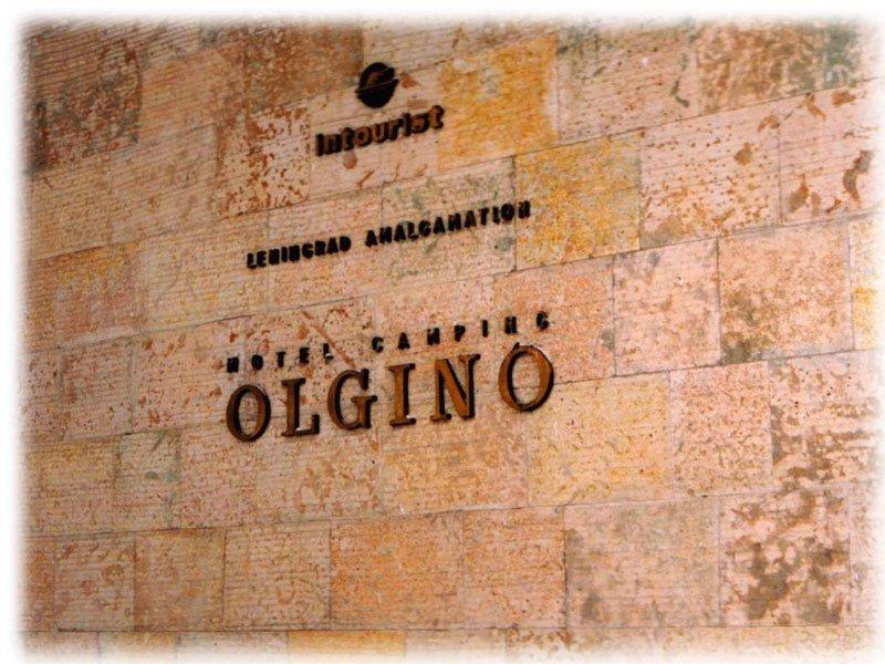 Olgino1