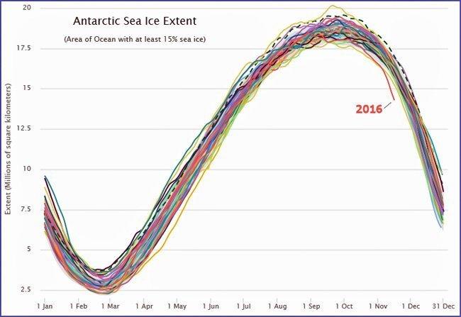 antarktis-havis