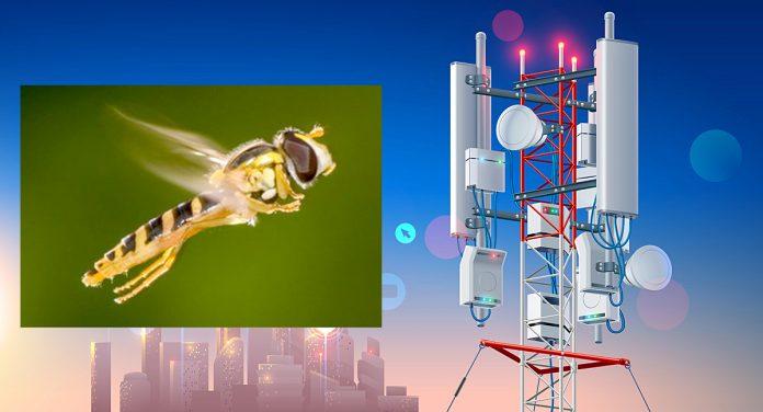 3858822909a Velge mellom 5G og insekter? Vi får ikke begge deler | steigan.no